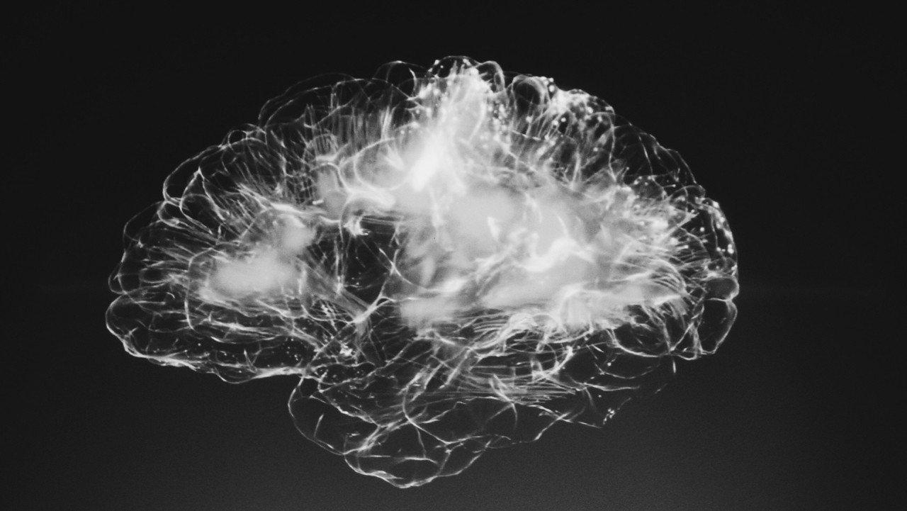 Connettoma. Ecco come comprenderemo il cervello.