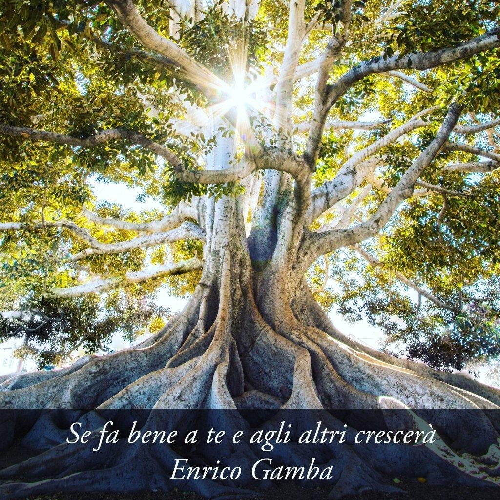 Continua a crescere - Psicologo Milano - dr. Enrico Gamba