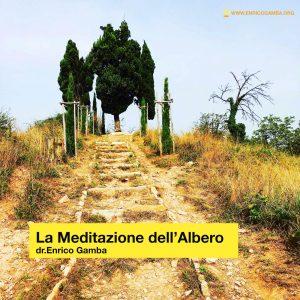 La meditazione dell'Albero - dr. Enrico Gamba