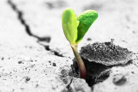 La Resilienza
