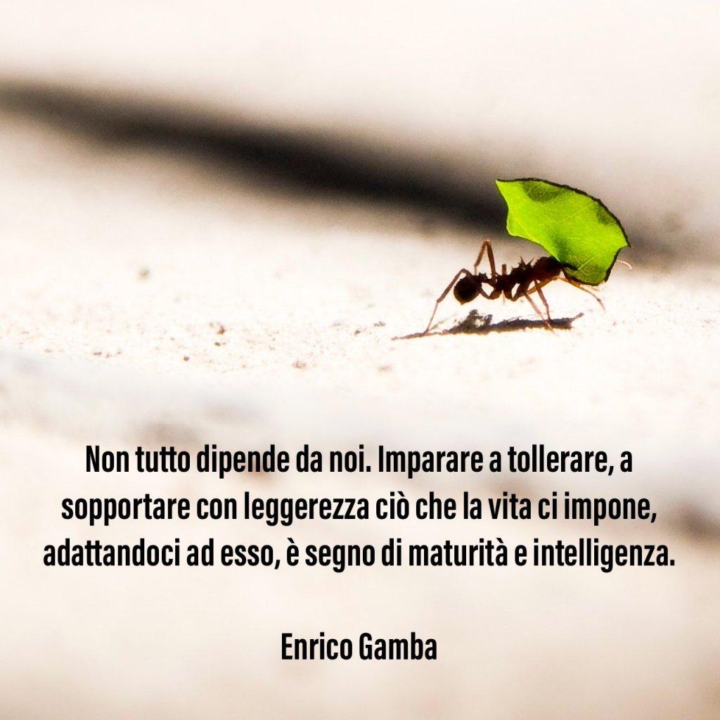 Tolleranza - Psicologo Milano - dr. Enrico Gamba